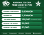 Nearly PKR9million up for grabs in National T20 Cup
