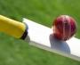 Overview of the School Cricket program
