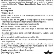 Job Opportunity at PCB