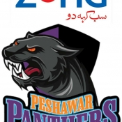 ZONG Peshawar Panthers Logo for Broadcaster, Print, Outdoor, Electronic, all mediums